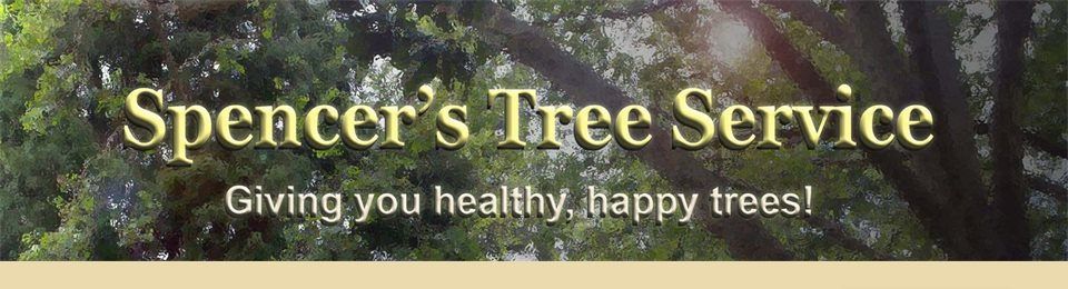 Spencer's Tree Service - Giving you healthy, happy trees!
